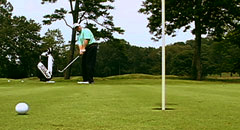 Golf Swing Chip Shot